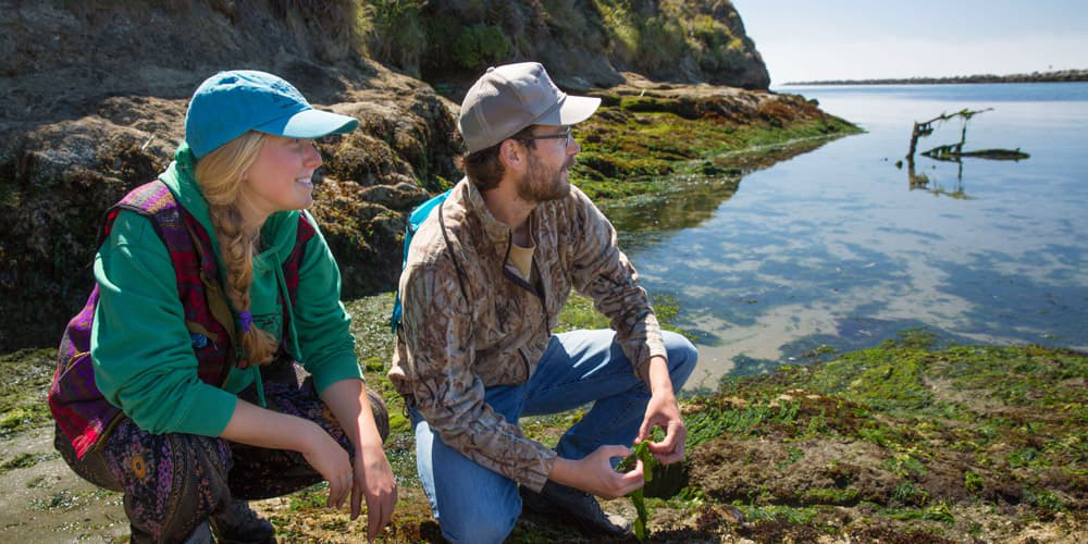 A student and professor conducting research in Bodega Bay
